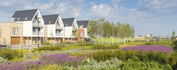Beaulieu Success At Planning Awards